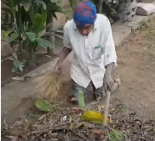 A Gardener Safdar