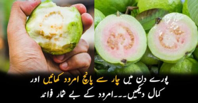 امرود کے بے شمار فوائد