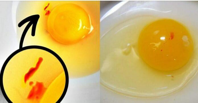 انڈوں کے اپر ان لال نشانات کا کیا مطلب ہے
